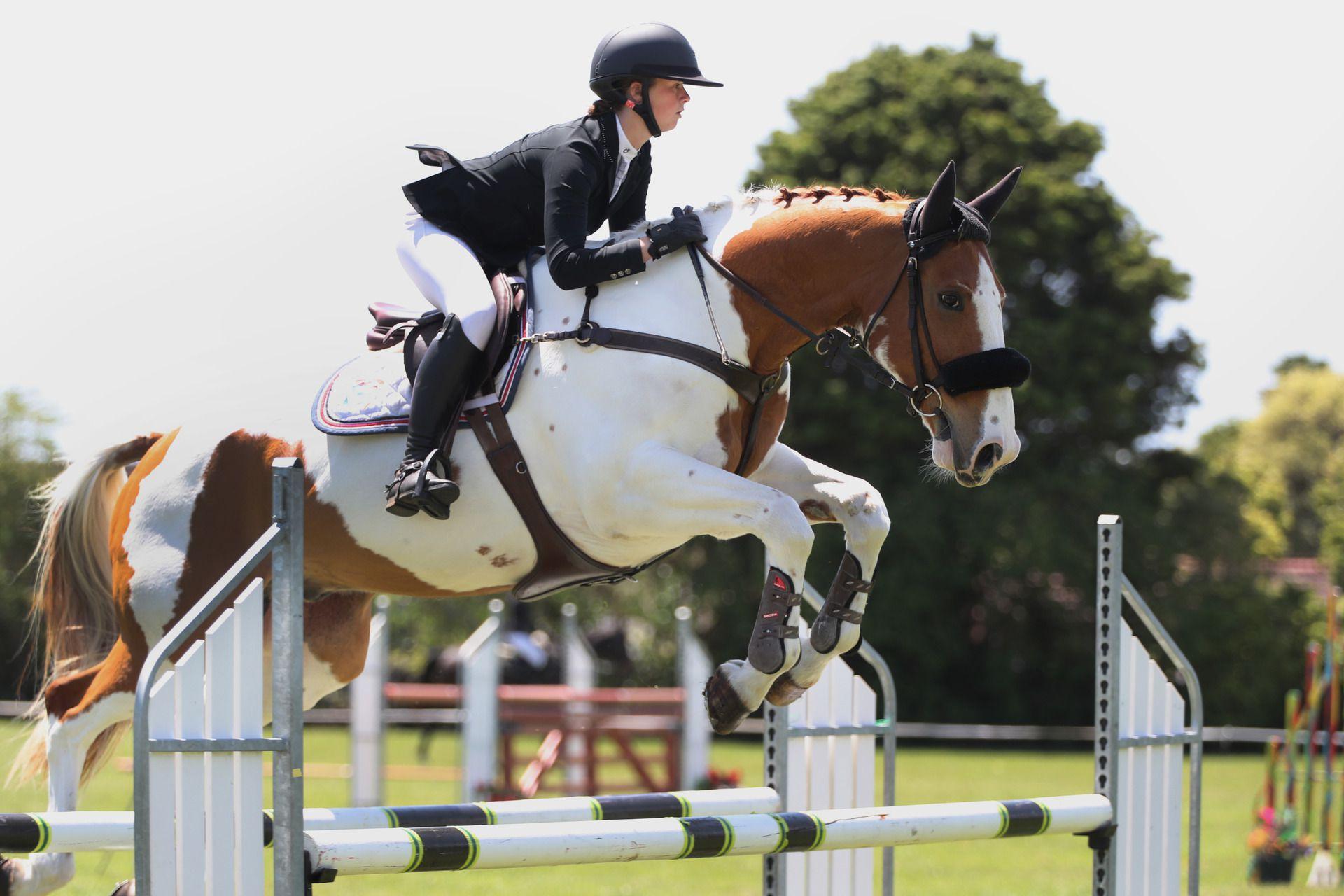 Zeena and her horse